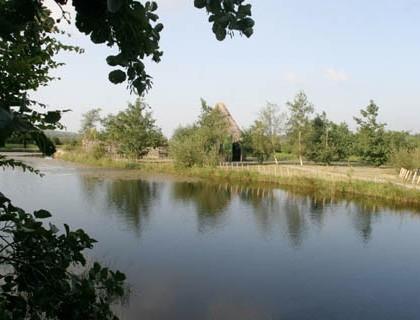 Millstreet Country Park