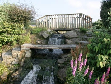 millstreet C Park.paps.Banteer pond